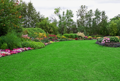 Exceptional Lawn And Garden Services · Custom Masonry Services · Home Improvement  Services. Tree Services ...